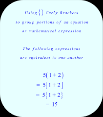 math the meaning of braces what does equation mean in math jennarocca