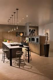 Contemporary Kitchen Styles Contemporary Kitchens Modern Kitchen Design Ideas Long Island Ny