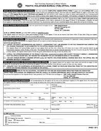 18 Printable Executive Director Resume Template Forms