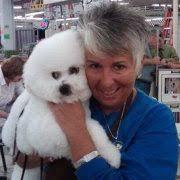 Wendy Ball (wendanbichons) - Profile   Pinterest