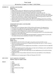 Developer Resume Examples Unique AX Developer Resume Samples Velvet Jobs