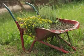 Resultado de imagen de jardines ecológicos