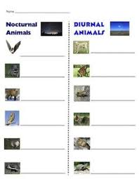 diurnal animals list for kids. Perfect List Nocturnal Animals Sort  Free Homeschool Printables And Worksheets  Pinterest Animals Activities Animal To Diurnal List For Kids N