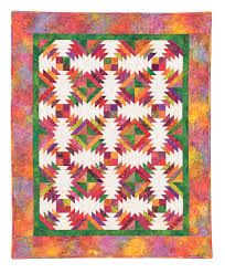 Pineapple Quilt Pattern Impressive Pineapple Quilt Eleanor Burns Signature Pattern 48