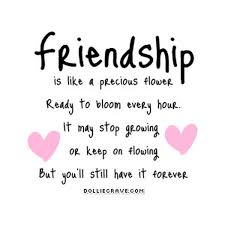 Nice Quotes About Friendship Magnificent FRIENDSHIP QUOTES