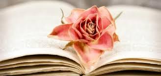 Liebeszitate über 97 Romantische Sprüche über Die Liebe