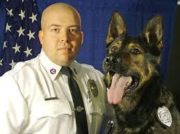Animal Cop 12 15 2011 Cop Resigns Over Ocpds K 9 Handling News