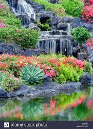 waterfalls and flower gardens at the grand hyatt kauai hawaii