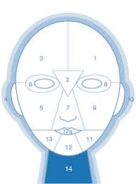 Dermalogica Face Mapping Skin Analysis Dermalogica