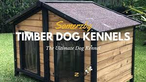 wooden kennel dog kennels diy plans