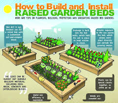 raised beds growing food anywhere info graphic gardens how to build and install raised vegetable garden