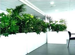 indoor plant holders interior flower pots large planters regarding decor wall nz