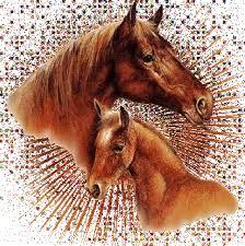 """Résultat de recherche d'images pour """"gif chevaux anime"""""""