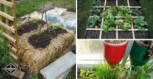 10 weird intensive gardening methods