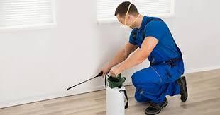 Image result for pest services