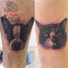 новосибирск как кошка с собакой в день влюбленных две