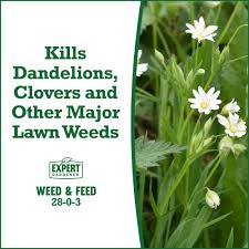 expert gardener weed and feed. Delighful And Expert Gardener 15000 Square Feet Weed And Feed Lawn Fertilizer 2803   Walmartcom For And S
