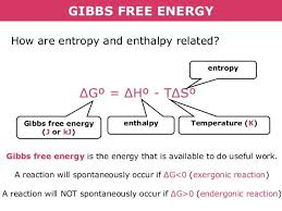 Gibbs Free Energy Entropy Enthalpy Chart Gibbs Free Energy How Are Entropy And Enthalpy Related G