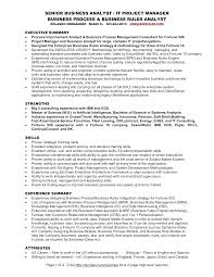 It Analyst Resumes Free Senior Business Analyst Resume Templates At