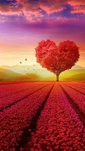 HD Love Wallpaper - KoLPaPer - Awesome ...