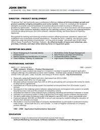 Executive Resume Templates Word Unique Executive Resume Template Senior Account Sample Word Free Download