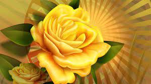 Yellow Roses Wallpaper on WallpaperSafari