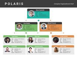 Organizational Chart Of A Company Company Organizational Flow Chart Template