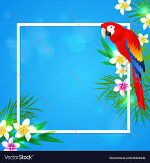 summer background summer background with tropical flowers and parrot
