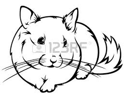 Small Picture Cute Chinchilla Coloring Pages Coloring MChinchillaPrintable