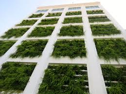 Plants On Buildings. Published September 27, 2014 at 1280 960 in .