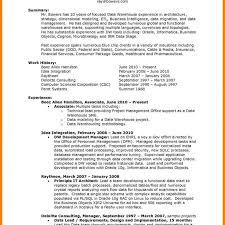 job description data manager bi project manager job description project management jobs 45