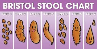 Bristol Stool Chart For Kids Poop 101 Steven And Chris