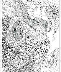 Intricate Coloring Designs Trustbanksurinamecom