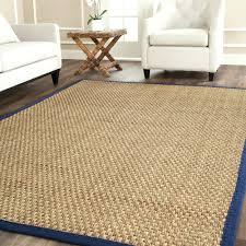 home interior edge balta rugs rug bold inspiration creative ideas nbacanotte s from balta rugs