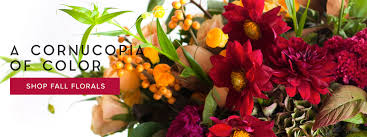 san ramon florist corporate flowers and gifts