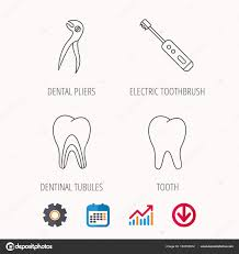 Electric Toothbrush Comparison Chart Tooth Electric Toothbrush And Pliers Icons Stock Vector