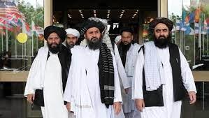 حركة طالبان تكشف الطريق الوحيد لتوقف هجمات تنظيم داعش في أفغانستان - خبر24  ـ xeber24