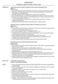 Learning Development Program Manager Resume Samples