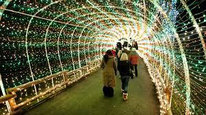 Lv Zoo Lights Lehigh Valley Zoo Fundraiser Winter Light Spectacular