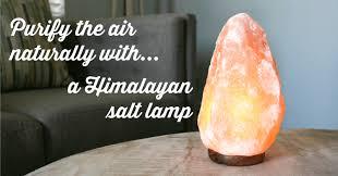 6 health benefits of himalayan salt health natural himalyansalt dontmesswithmama com