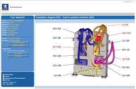 immunohistochemistry diagram related keywords suggestions ihc wiring diagram