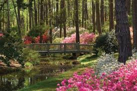 callaway garden hotel. Calloway Gardens Is A 13,000 Acre Resort In Pine Mountain, Georgia. It Was Originally Callaway Garden Hotel
