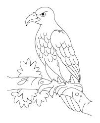 This is a listing for a instant download for svg, studio3, png files. Eagle Template Animal Templates Free Premium Templates