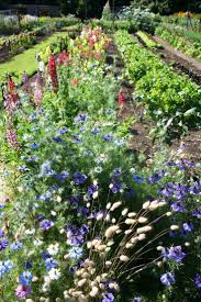 English Kitchen Garden 17 Best Images About The Kitchen Garden On Pinterest Gardens