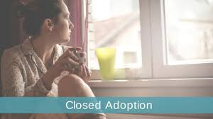Adoption Birth Plan Template Closed Adoption How Closed Adoption Works Pros And Cons