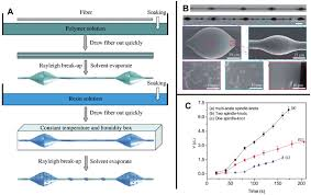 bioinspired special wettability surfaces from fundamental research bioinspired special wettability surfaces from fundamental research to water harvesting applications