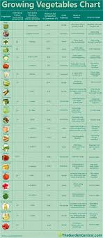 Growing Your Own Vegetables A Chart To Help Knowing What