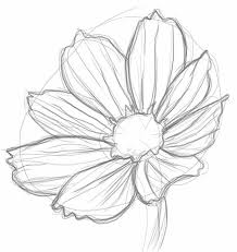 Small Picture Best 25 Daisy drawing ideas on Pinterest Daisy art Pen