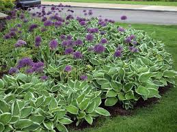 image of small perennial garden ideas