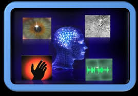 Biometric Technology Examples Of Biometric Technology Download Scientific Diagram